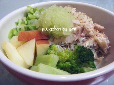 ペットシッターの手作り食-アジご飯(温野菜とフルーツ添え)-